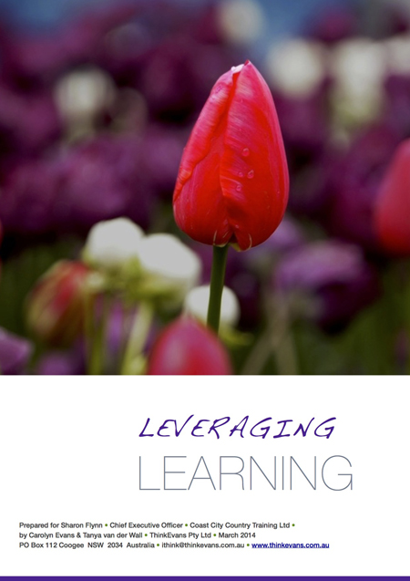 Leveraging Learning 19 March 2014 cover small